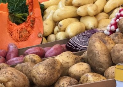 Root vegetables_thumb_4913