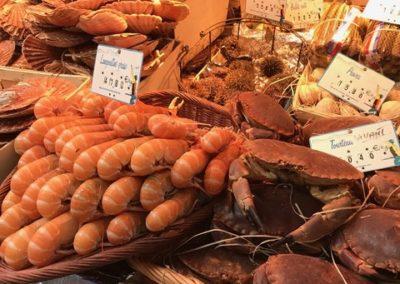 Seafood_thumb_490d